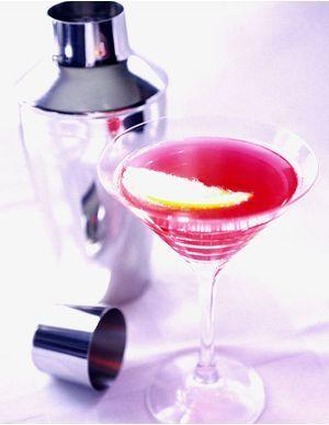 Recettes de cocktails au Martini
