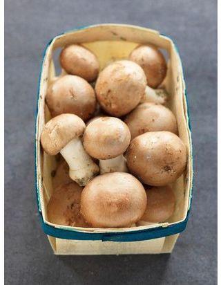 Velouté de champignons à la crème pour 6 personnes ...