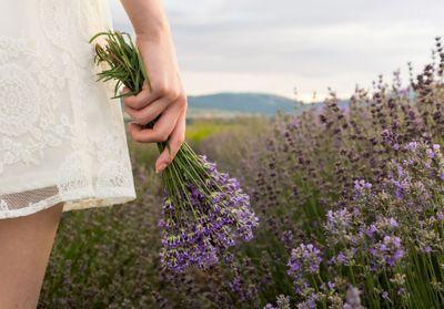 L'aromachologie, ou comment les odeurs agissent sur notre bien-être