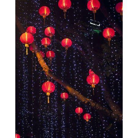 15 recettes pour f ter le nouvel an chinois elle table. Black Bedroom Furniture Sets. Home Design Ideas