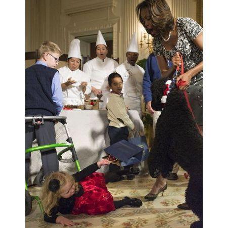 L attaque du chien obama les 50 photos people qui ont for Attaque a la maison blanche