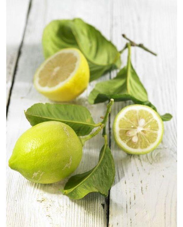 cr me au citron vert recettes elle table. Black Bedroom Furniture Sets. Home Design Ideas