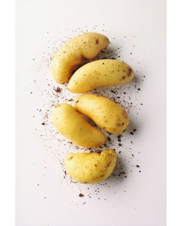 gâteau de pommes de terre pour 6 personnes - recettes elle à table
