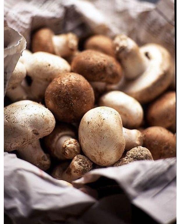 Rognon de veau aux champignons et aux deux moutardes recettes elle table - Recette de rognons de veau ...
