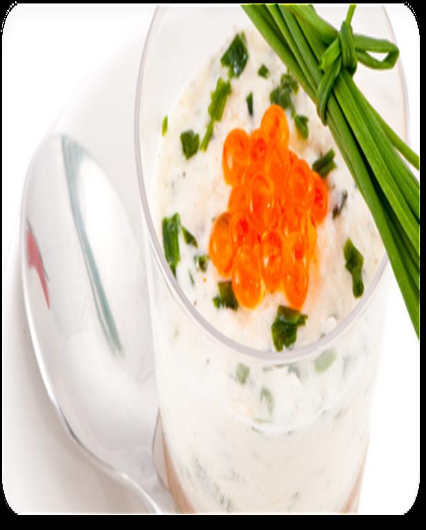 Verrine tzatziki crevettes