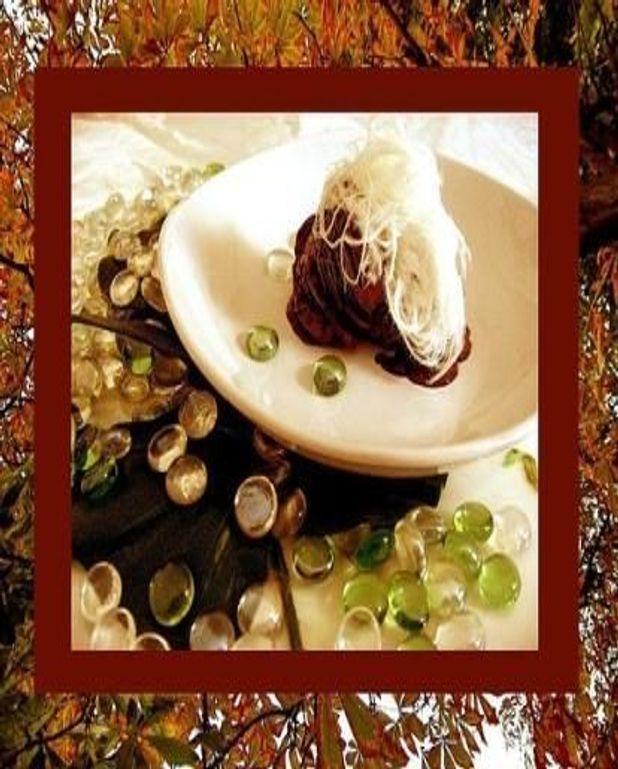 Fabuleux glace au chocolat, sésame et miel