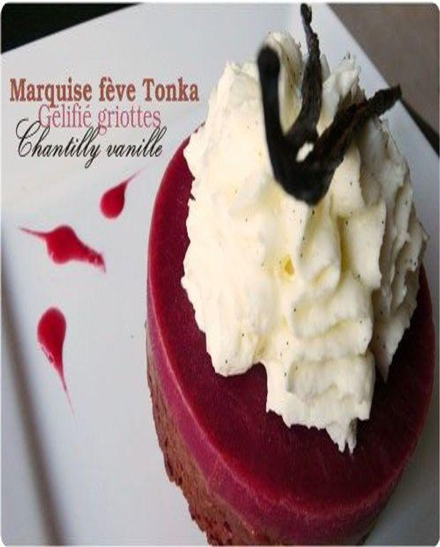Marquise au chocolat et fève Tonka, gelée griottes, chantilly vanille