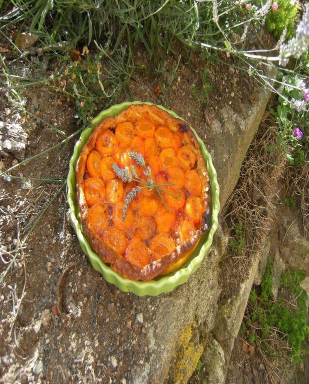 Tarte aux abricots à la lavande