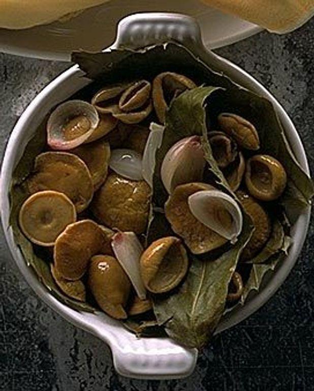 Cèpes sur lit de feuilles de châtaignier