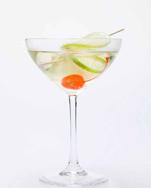 Cocktail au Martini blanc et tonic