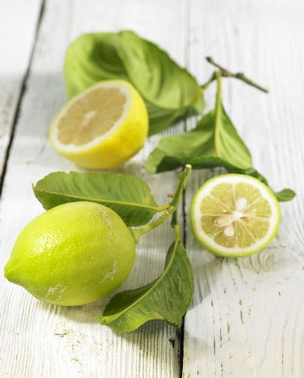 Crème au citron vert