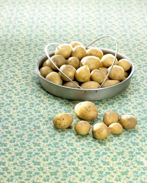 Soupe aux pommes de terre, lardons et fleurs des prés