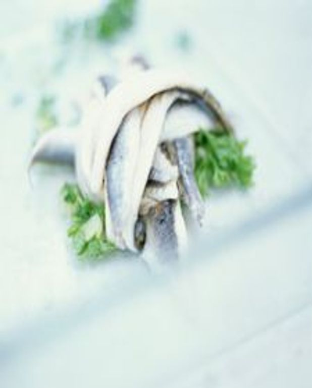 Filets d'anchois frais marinés