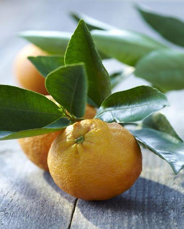 Glace orange-fraise