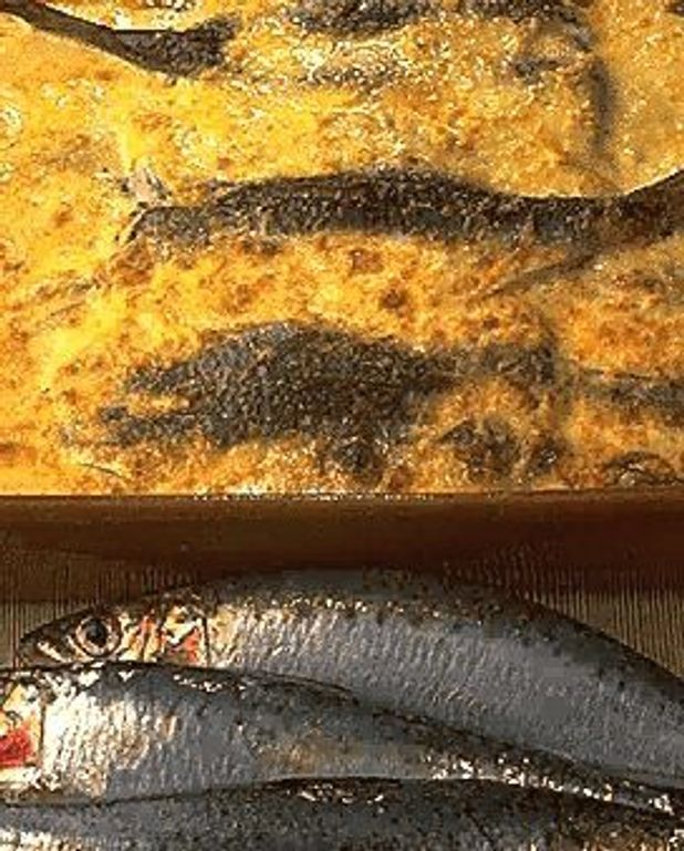 Gratin de sardines