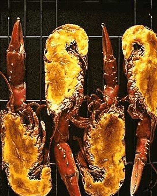 Homards grillés sauce hollandaise