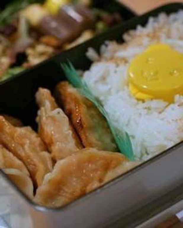 Home made gyoza et bento en photo