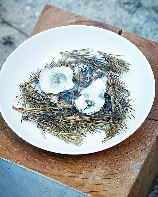 Huîtres fumées au pin, mousse coco