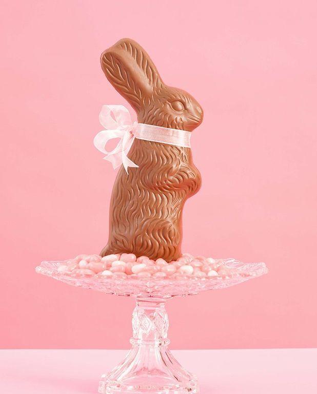 Lapin en chocolat