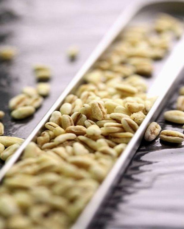 Œufs au plat et au blé