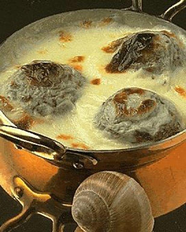 Oeufs aux escargots