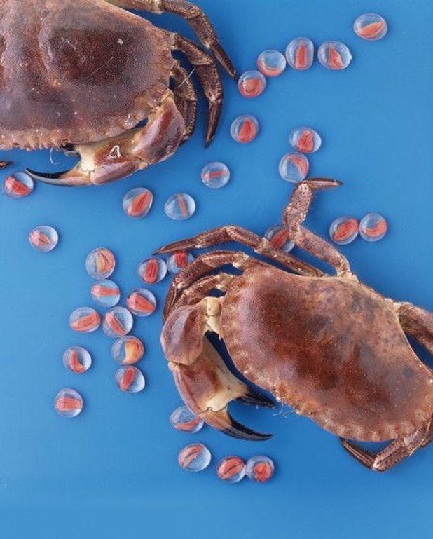 Omelette fourrée au crabe et aux crevettes