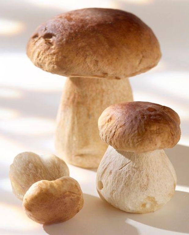 Poêlée de champignons d'automne