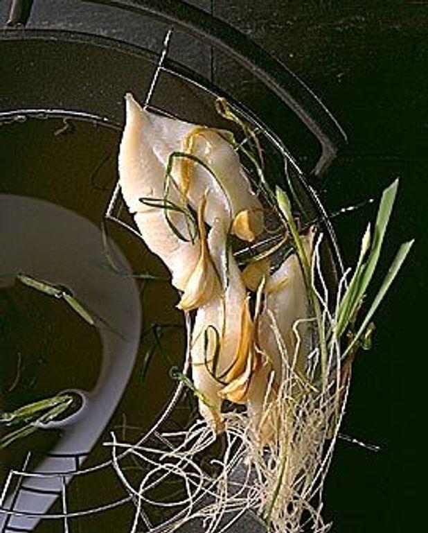 Poisson à la ciboule et au gingembre