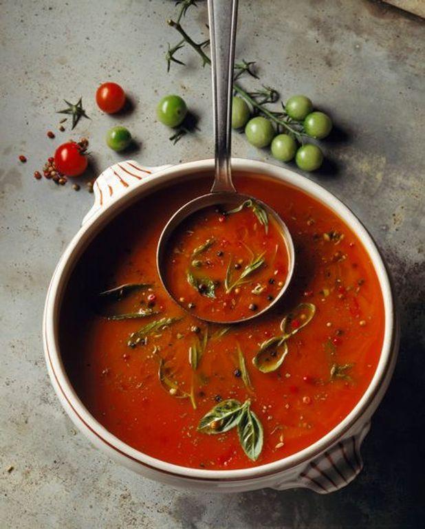 Potage à la tomate et au fenouil