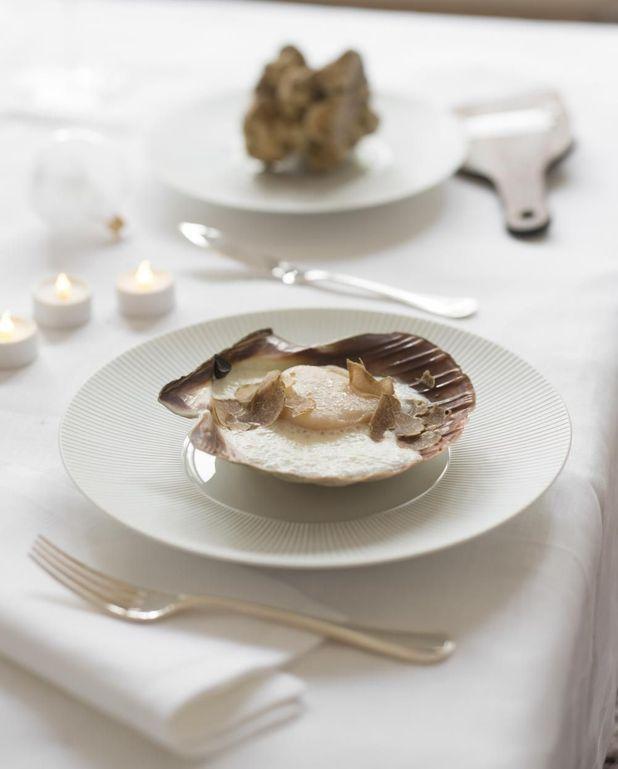 Saint-jacques rôties, émulsion de parmesan, truffe blanche