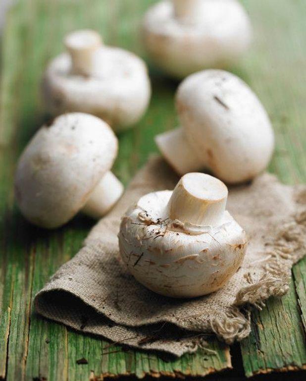 Salade de champignons légère