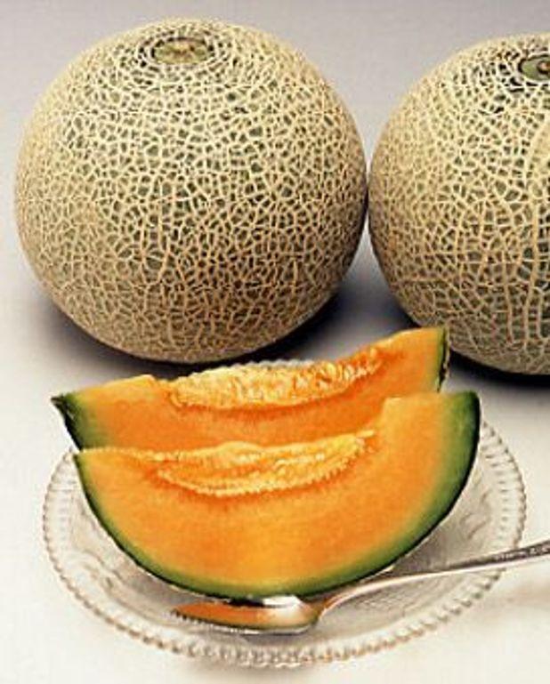 Salade de melon aux oranges