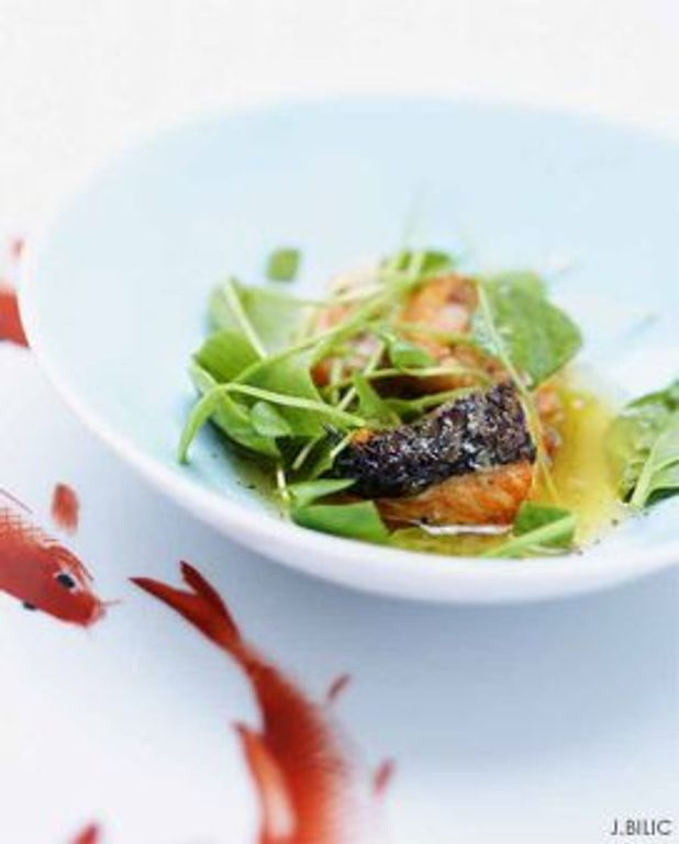Salade de saumon grillé et vinaigrette aux agrumes