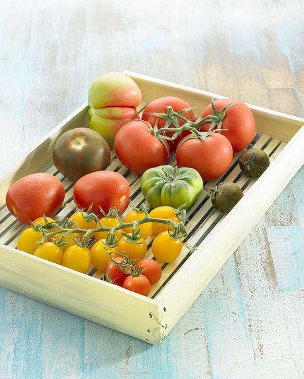 Salade de tomate à l'omelette
