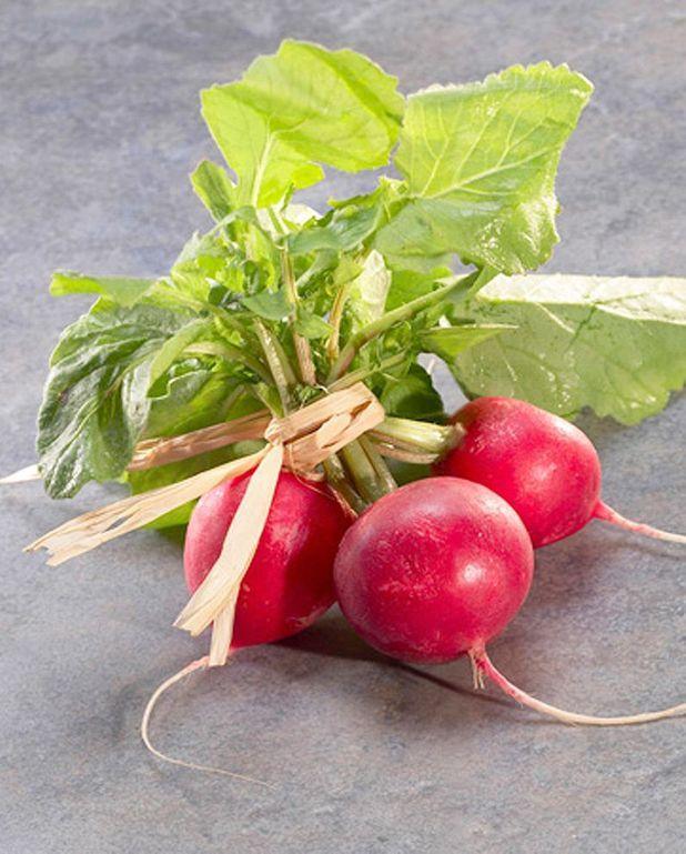 Salade fraîche aux radis et oeufs