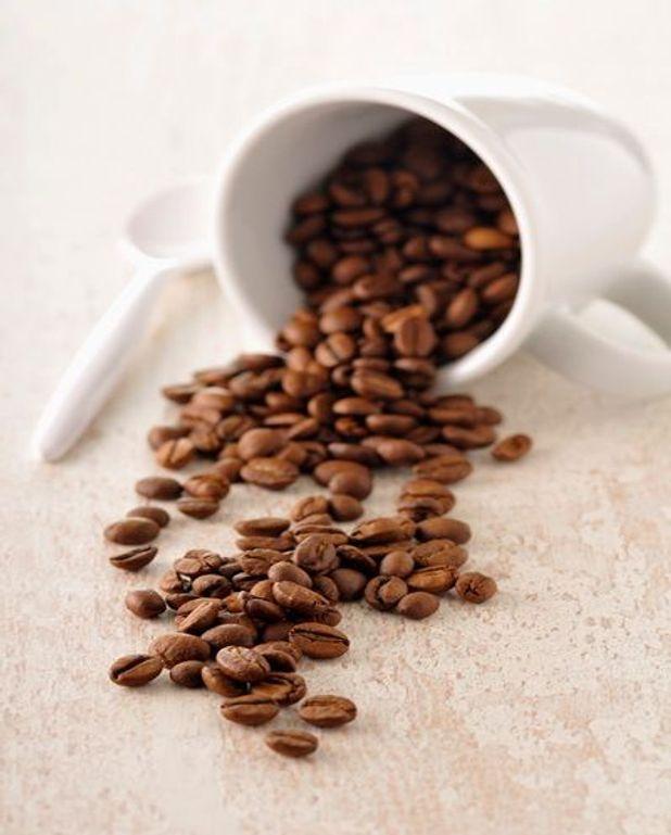 Sorbet au café à l'orange