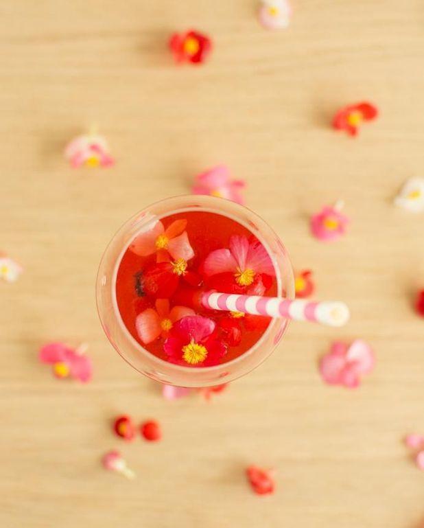 Spritz au jus de cranberry