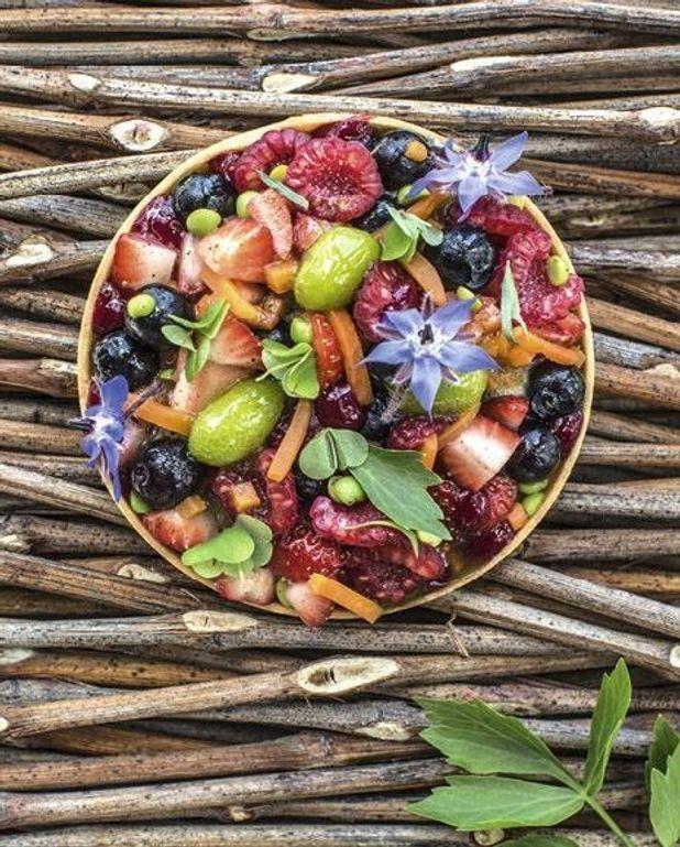 Tartelettes légumes, fruits rouges et sorbet livèche