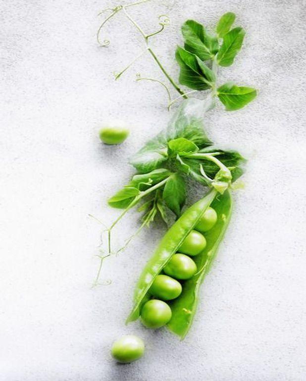 Terrine aux légumes