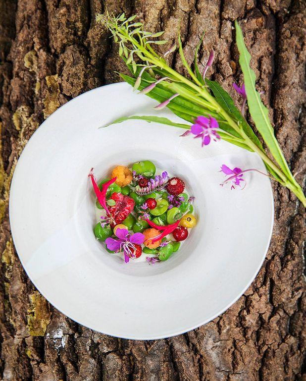 Fèves, sauce au yaourt, fleurs et fruits du moment