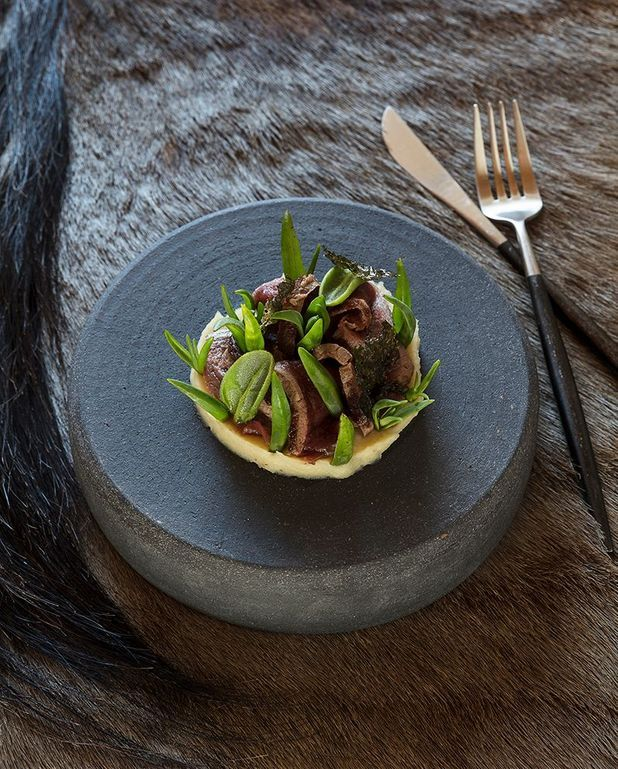 Filet de springbok, purée de haricots et plantes succulentes