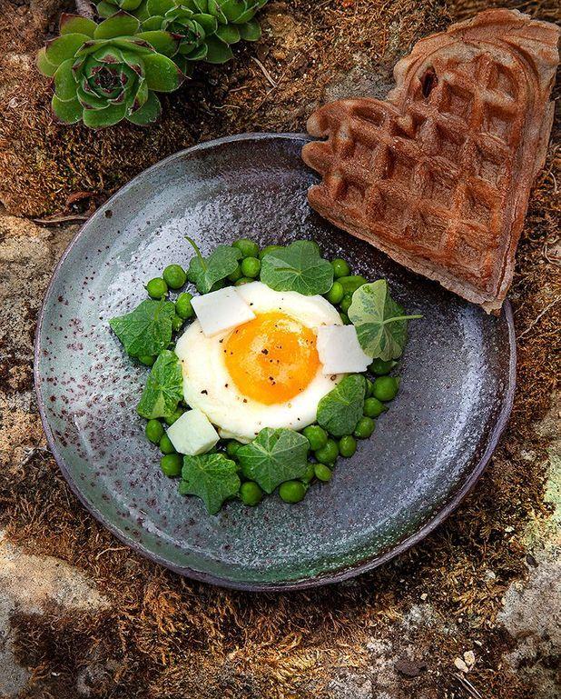 Pain gaufré à la feuille de figue, œuf au plat, petits pois et feta