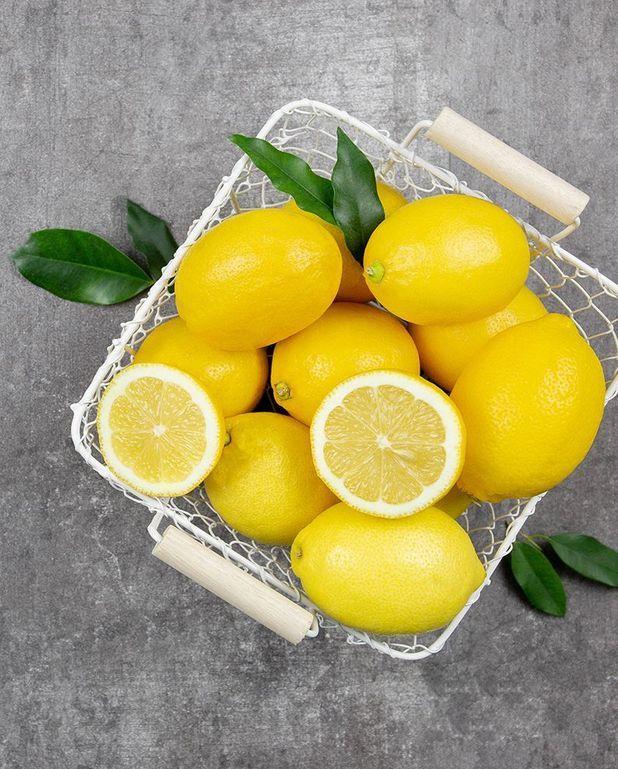 Pâte de citron confit au sel