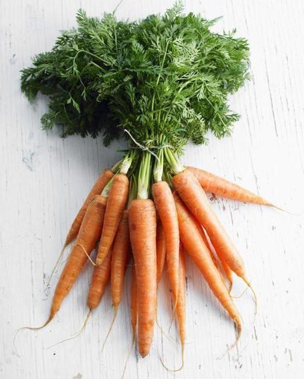 Purée de carotte et endive