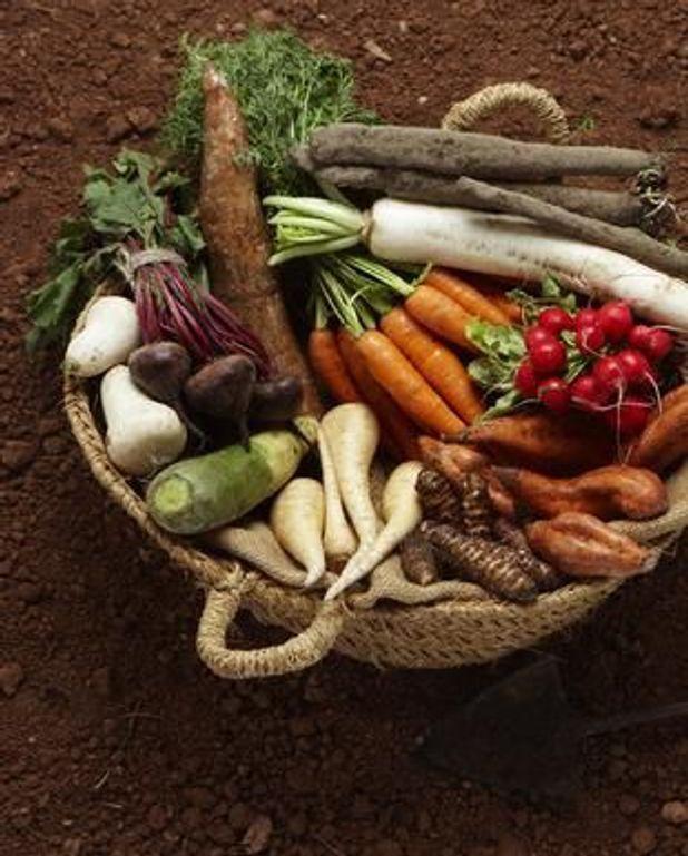 Cocotte de légumes racines au miel