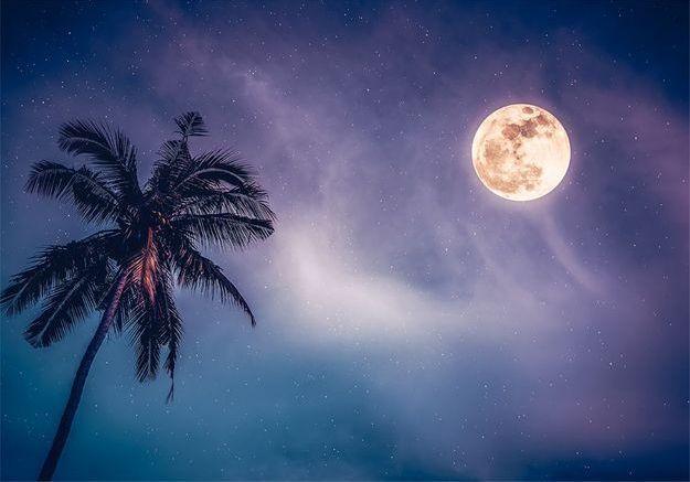 Que retenir de la pleine lune bleue en Verseau du 22 août ?