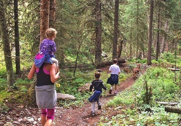 Petite balade forestière en famille