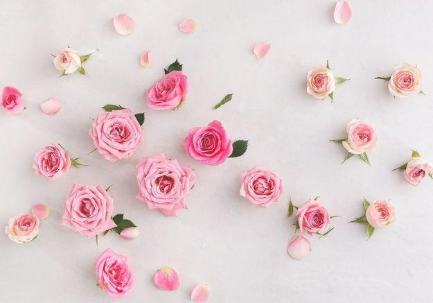 Comment la rose s'impose dans les parfums contemporains