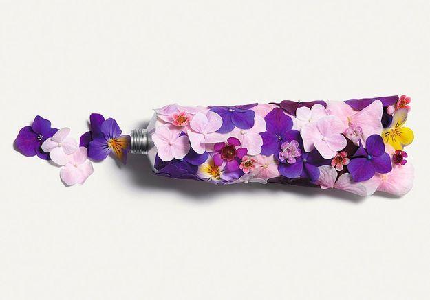 Flower power : le pouvoir caché des fleurs