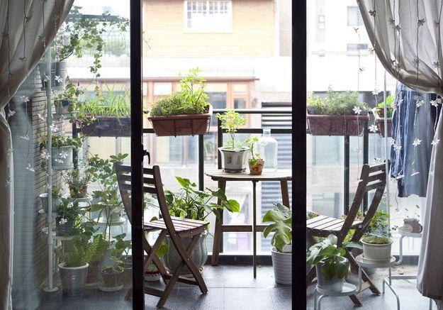 Multiplier les végétaux pour un petit balcon façon jungle